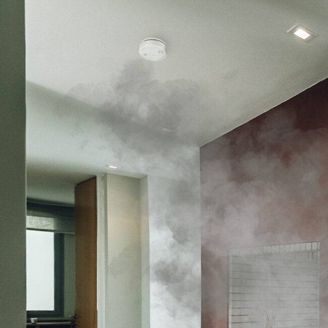 alarm-sensor-smoke-detect